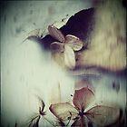 le temps  /  son mouvement by linda vachon