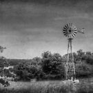 Vintage Texas by Colleen Drew