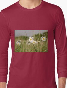 Daisies in field  Long Sleeve T-Shirt
