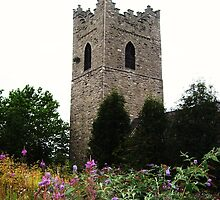 Hidden in Nature - St. Audeon's Church by Katlyn Novitski