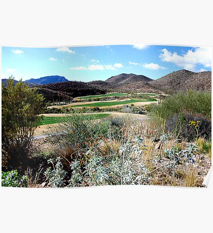 Winter Golf in Tucson  Poster