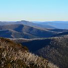 The View from Hotham by Georgie Hart