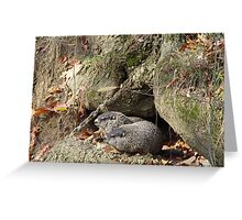 Couples Retreat Greeting Card