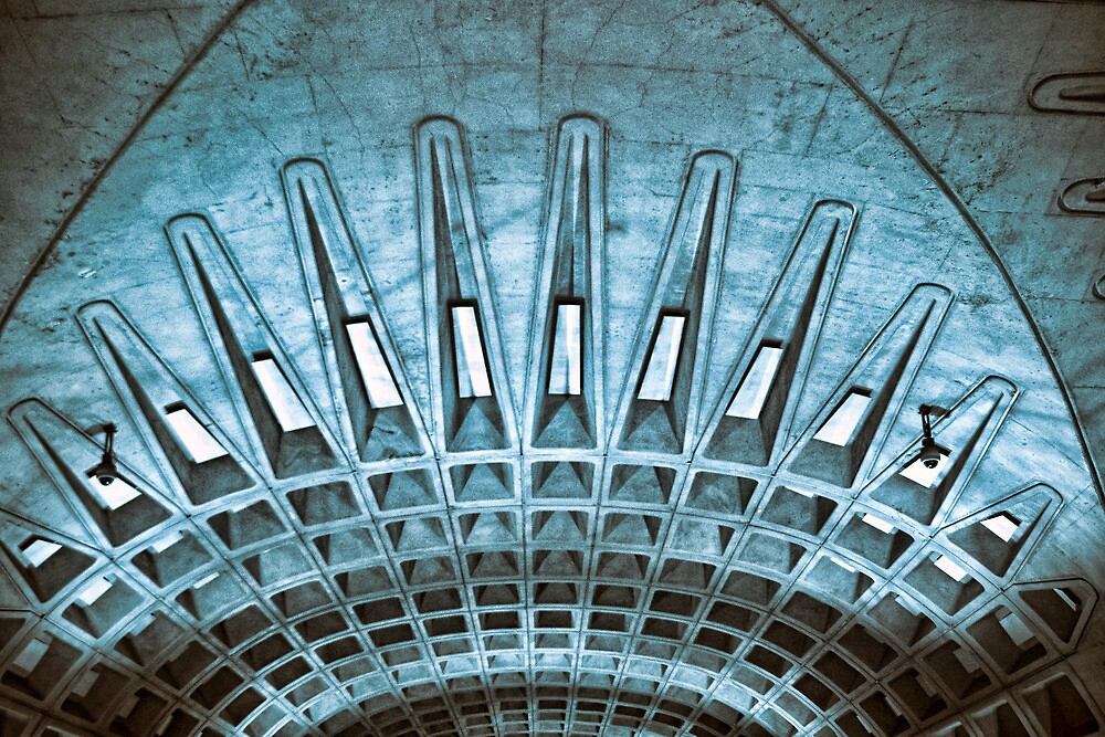 The Lines Above by Nicholas Stankus