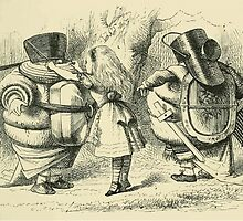 Through the Looking Glass Lewis Carroll art John Tenniel 1872 0107 Do I Look Very Pale by wetdryvac