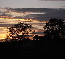 Sunset at Wilton. by Patricia Rogers