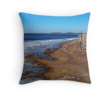 Frozen Napeague Bay Throw Pillow