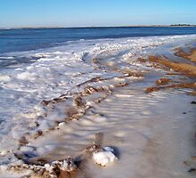 Frozen Napeague Bay by Dandelion Dilluvio