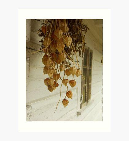 Dried Art Print