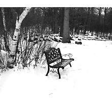 BW Bench II Photographic Print