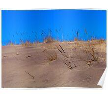 Montauk Walking Dunes Poster