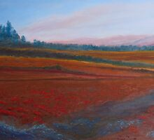 Dusk Falls on the Pumice Field by JennyArmitage