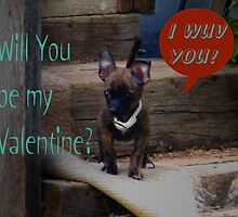 Puppy Valentine by R&PChristianDesign &Photography