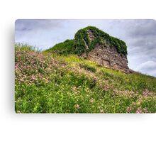 Wildflowers Surround the Historic Stonework Lime Kiln Canvas Print