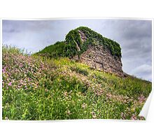 Wildflowers Surround the Historic Stonework Lime Kiln Poster