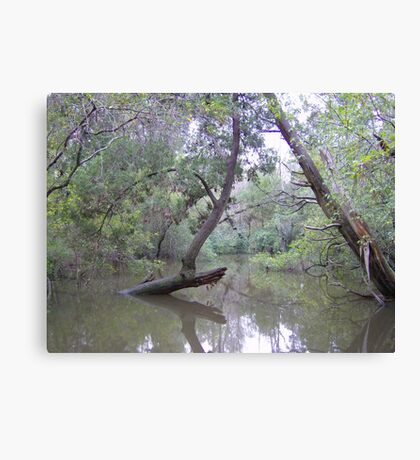 A Floridian Flood Canvas Print