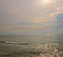 Well's Beach Maine, 10 by Carolyn Clark