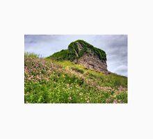 Wildflowers Surround the Historic Stonework Lime Kiln Unisex T-Shirt