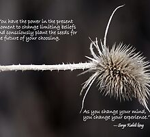 Seed For Thought by Betsy  Seeton