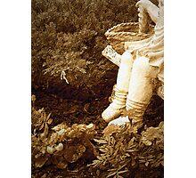 """""""Garden Girl In Sepia"""" Photographic Print"""
