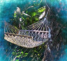 Hammock Dreams by Susanne Van Hulst