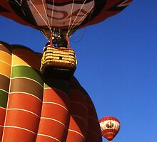 Hot Air Balloons by Harlan Mayor