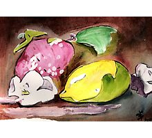 Fruit~ Lemon, strawberry, flower Photographic Print