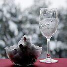 Winter breakfast by Bluesrose