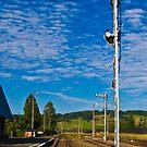 provincjal railway  by MarekM