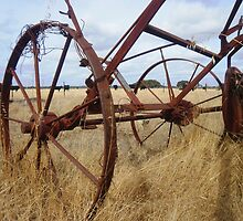 Left to Rust by Lynette Paltridge