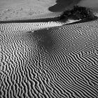 Dunes at Anna Bay 2 by Denise McDermott