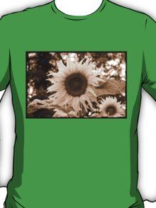 sunflower close up sepia T-Shirt