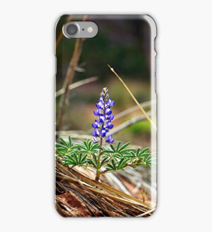 Monument Lupine iPhone Case/Skin