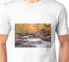Glowing Fall Foliage Over Kitchen Creek Unisex T-Shirt