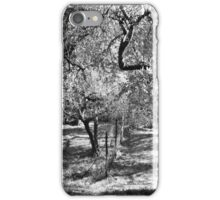 Olives in Assisi iPhone Case/Skin