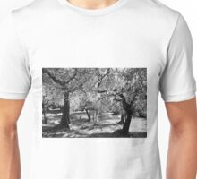 Olives in Assisi Unisex T-Shirt