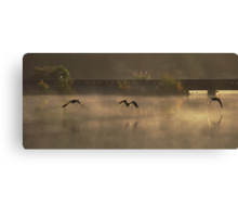 Three Geese in the Mist Canvas Print