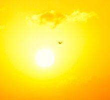 Blinding Flight by MarianBendeth