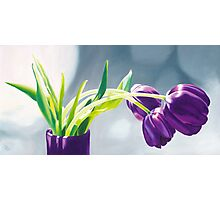 Purple Tulips I. - Oil painting Photographic Print