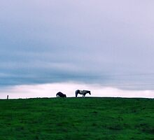 Up On The Hill by NancyC