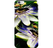 Passion Flower explosion! iPhone Case/Skin