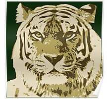 Tiger head in three colors Poster
