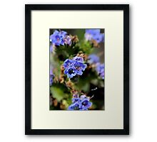 Blue Art Framed Print