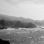 Carmel Highlands on a Foggy Day by nortonlo