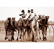 8 Camels Photographic Print