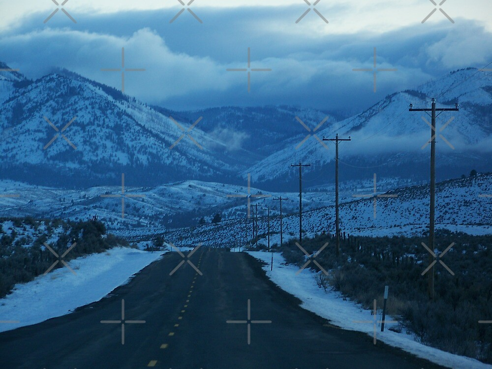 The Road to Unity by Betty  Town Duncan