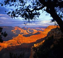 Grand Canyon South Rim #2 by Mike Norton