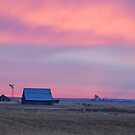 Sunrise at the farm by Rodney55