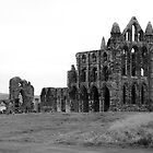 Whitby Abbey by ccsad