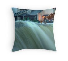 After The Deluge Throw Pillow